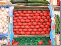 tomatos 2