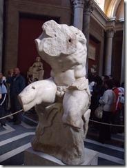 torso 1