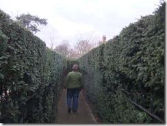 Bernice in the maze