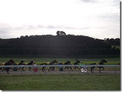 races 2