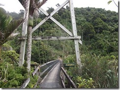 bridge heaphy