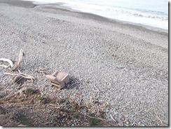 surf casting repose