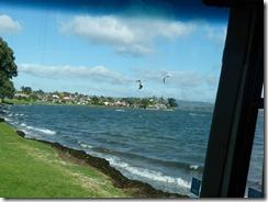 surf kites