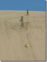 10sand surfing