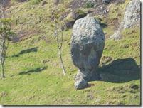 51 stone