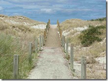 3 path